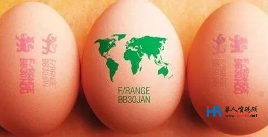 鸡蛋喷码经济又安全如何实现?