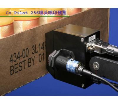实惠型UV喷码机