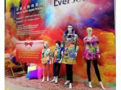 2020China上海国际有机颜料及染料工业展览会