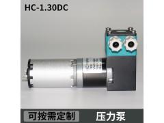 HC1.30DC.M美创力喷码机有刷压力泵微型高压泵