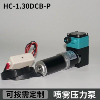 HC1.30DCB-P尿素喷雾压力泵南华喷码机高压泵